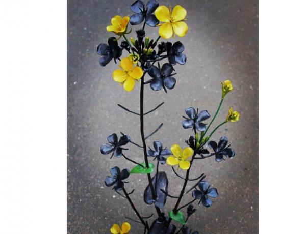 ロートアイアンオブジェ菜の花の写真