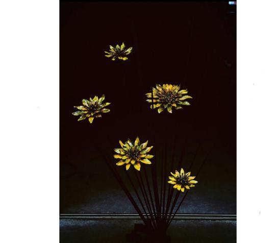 暗闇の中で花が浮かぶような写真